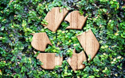 Leveraging Waste Disposal Data with Custom Logic